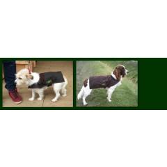 Hunter Harvey Dog Jacket